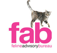 FAB Cattery in cheshire